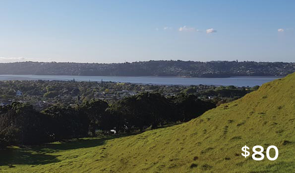auckland walking tours manukau harbour