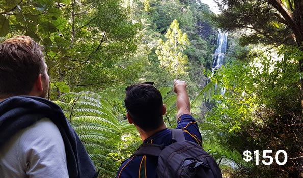 auckland walking tours waitakere wilderness
